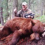 Bear-16